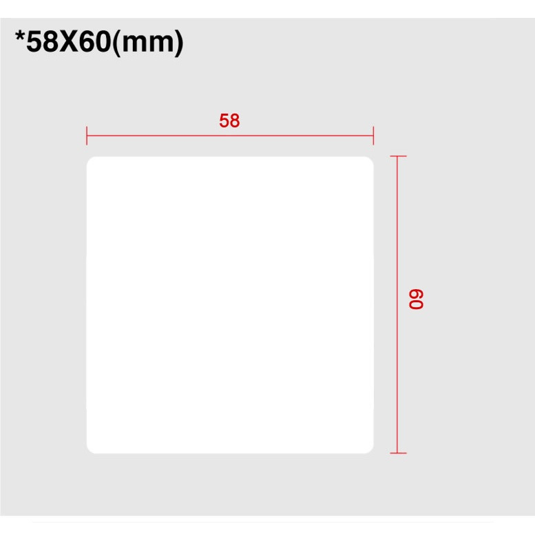 View Scale Labels 58 X 60 (blank)